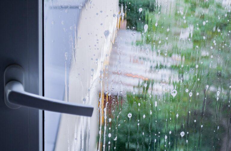 Window cleaning Elyria